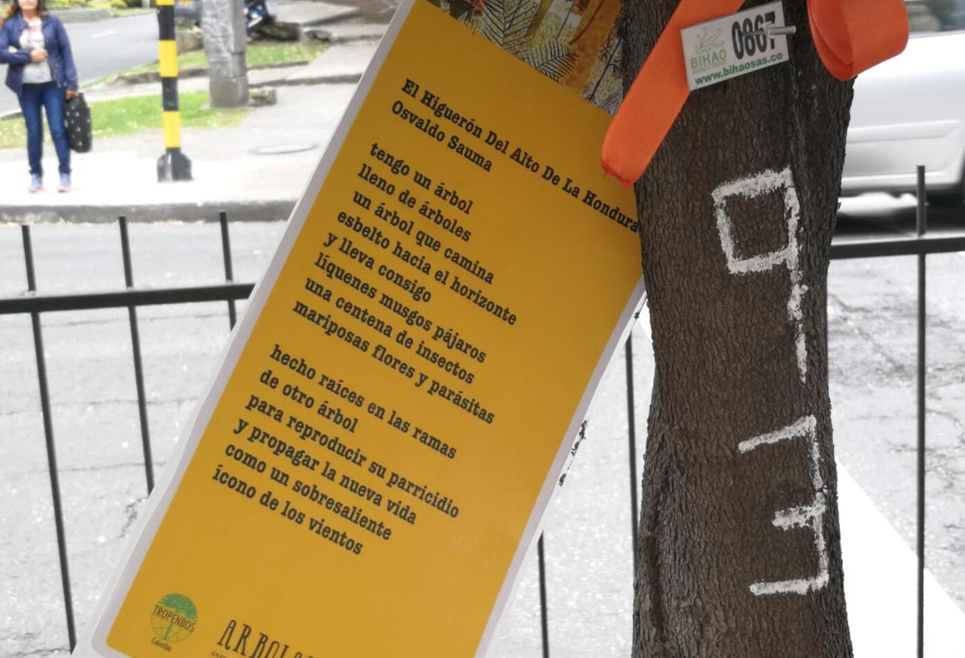 Poema en tronco de árbol inventariado para ser talado