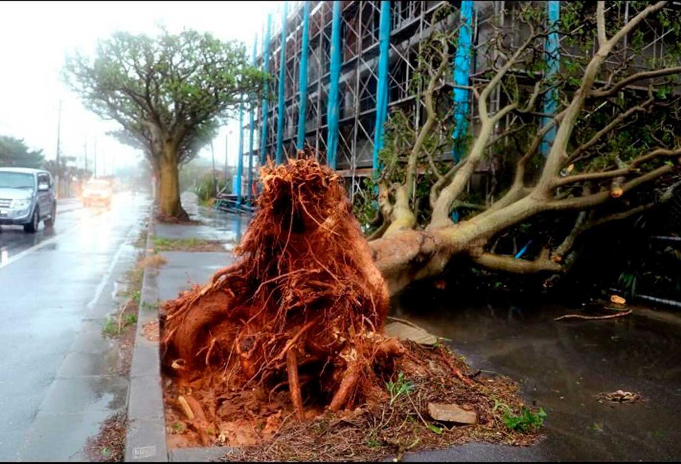 Fuertes vientos del Tifón Trami