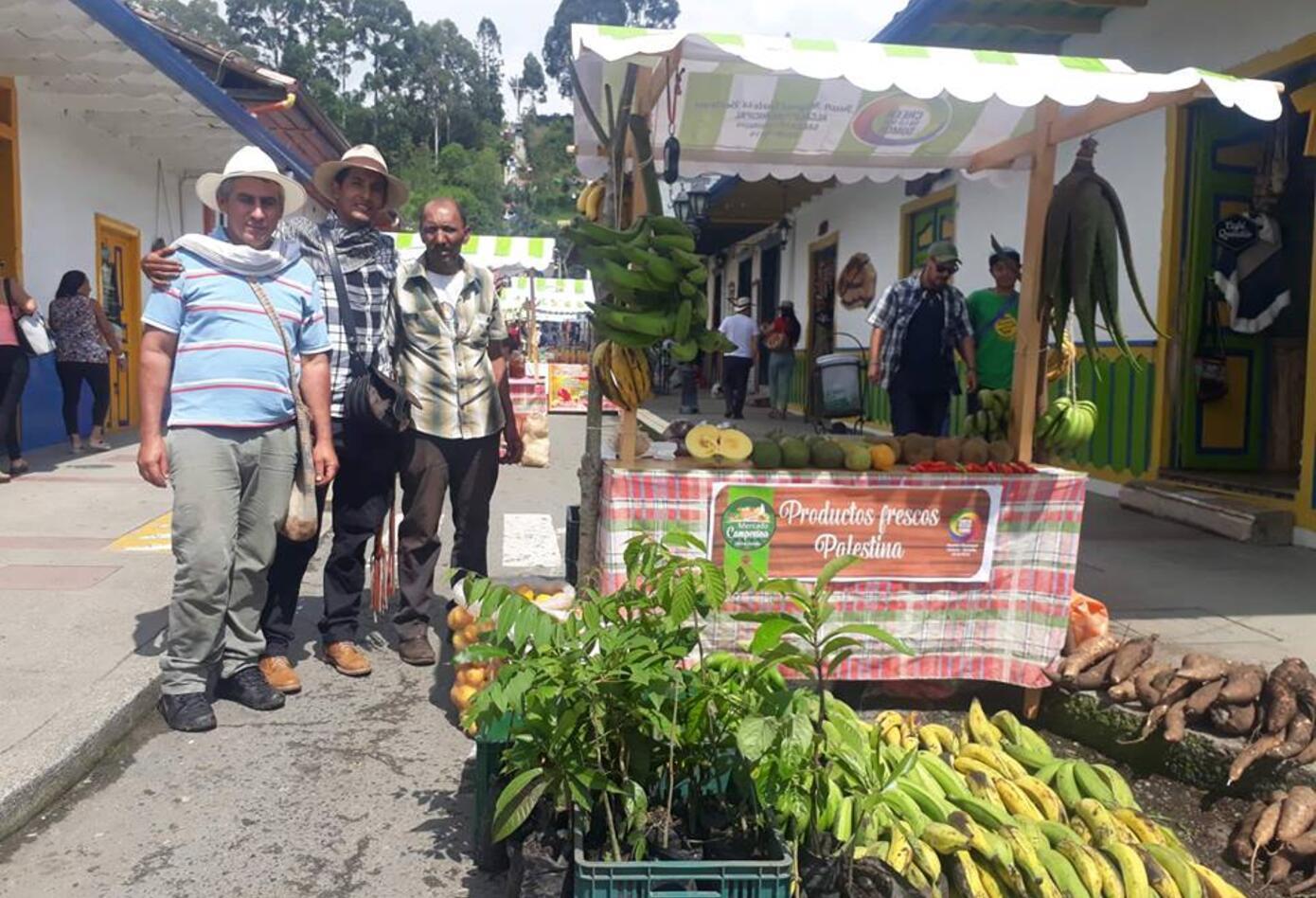Mercado Agroecológico en Salento, Quindío
