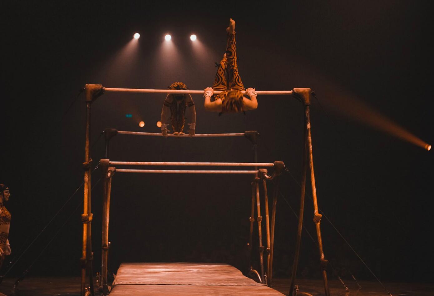 Circo del sol -Amaluna