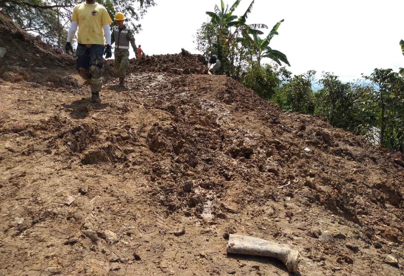 Terreno en la zona afectada.