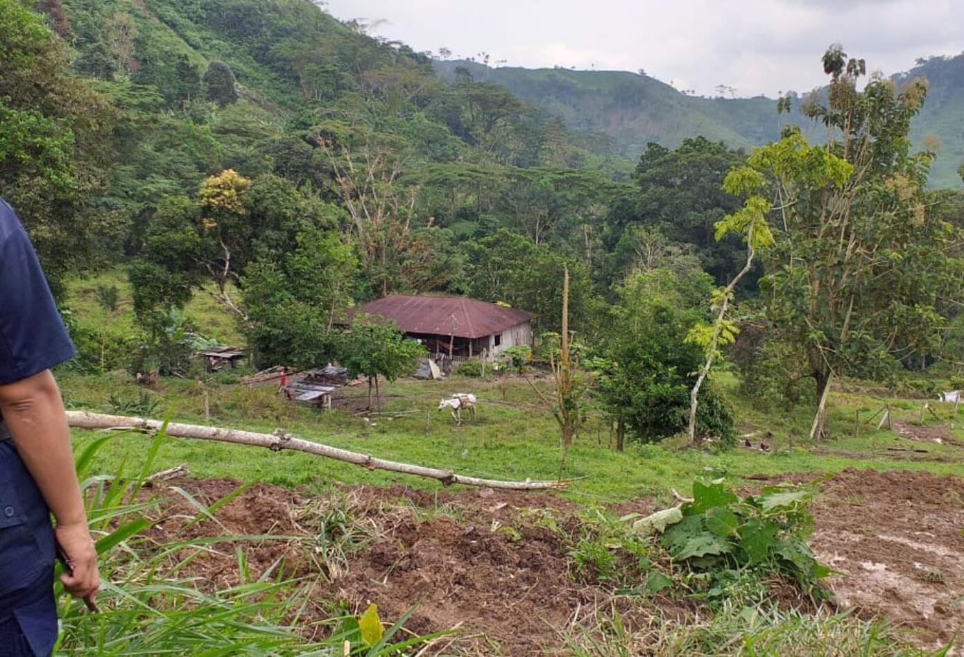 El Cuerpo de Bomberos Voluntarios de Otanche, han atendido a la mayoría de afectados, hay algunas zonas a las que no han podido llegar por el mal estado de las vías.
