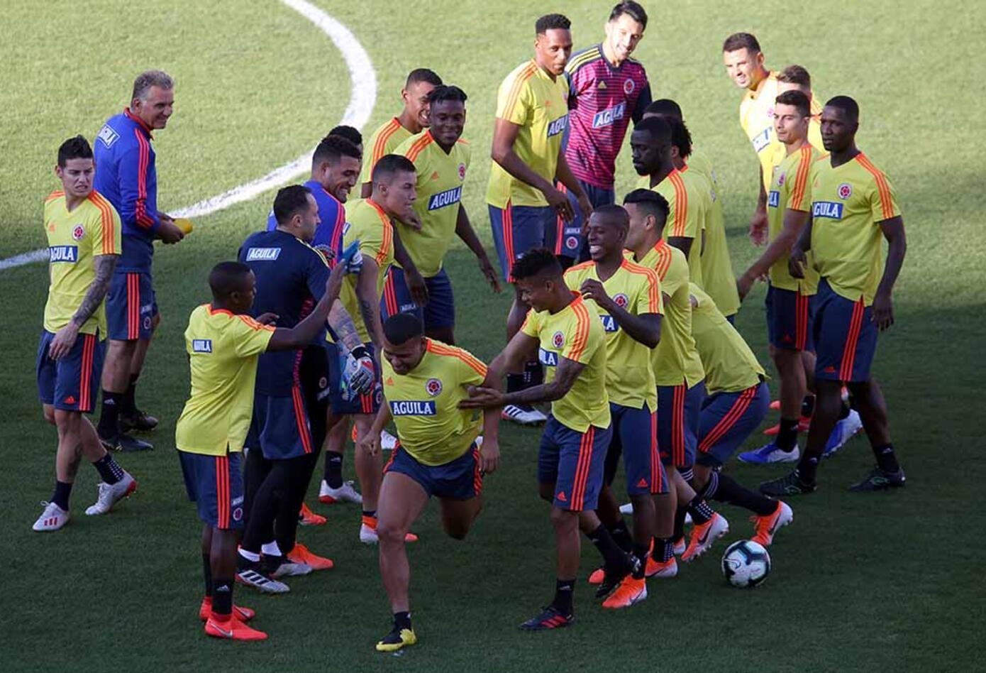 Los los jugadores de Colombia celebraron el cumpleaños del atacante Róger Martínez.