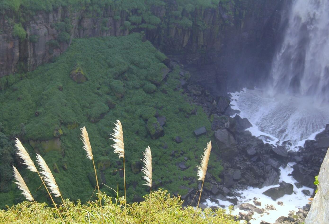 Esta es una iniciativa que se promueve para proteger los paisajes del país.