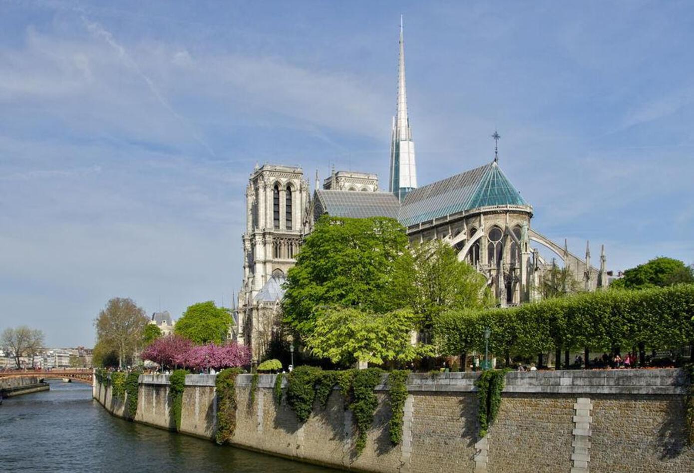 Diseños de la Catedral de Notre Dame