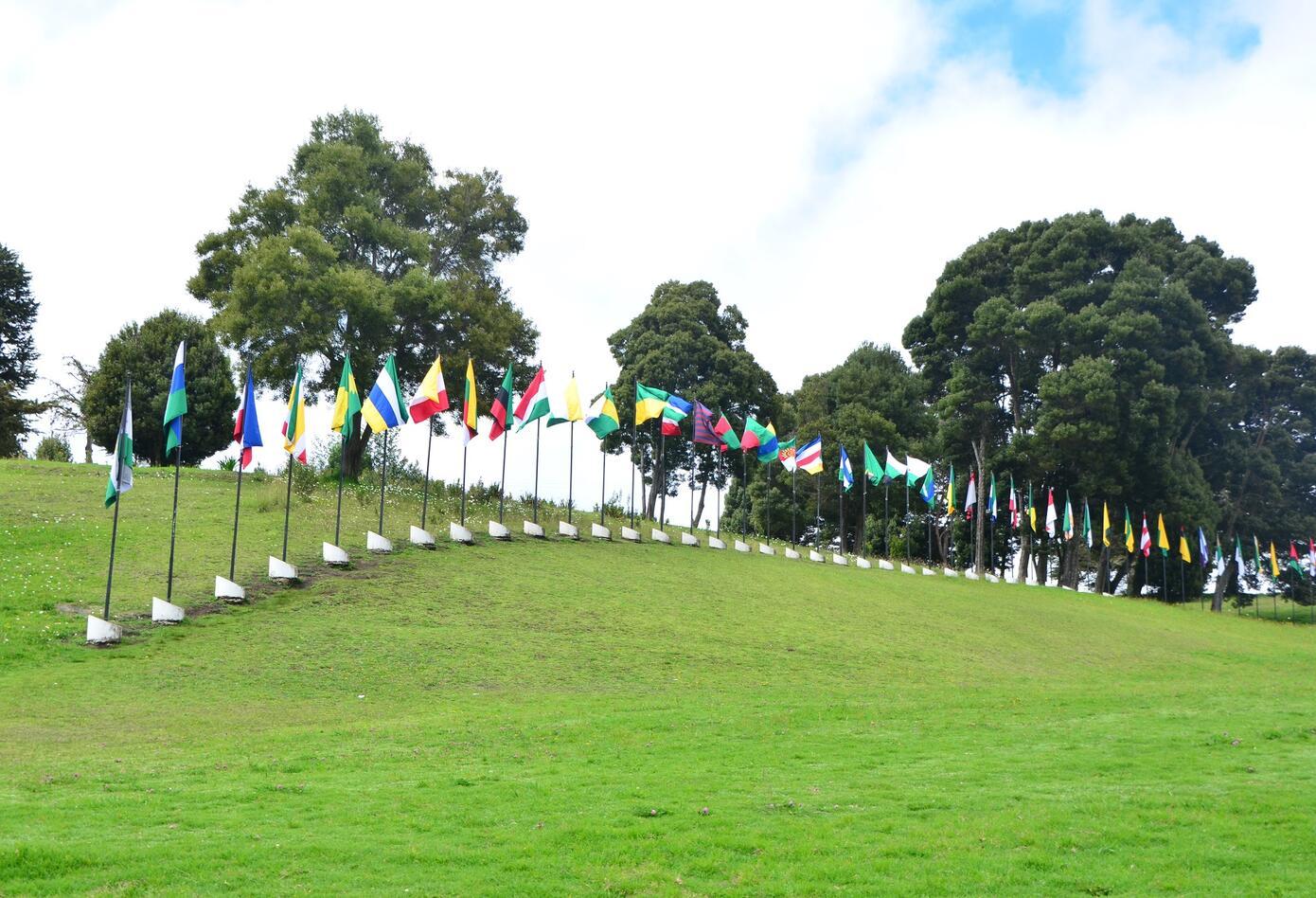 Banderas Puente de Boyacá