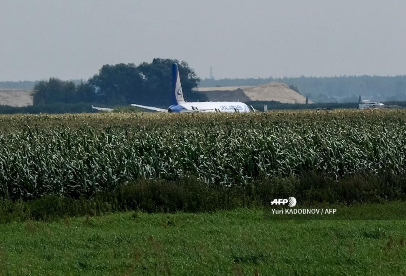"""De acuerdo a las autoridades, varios pájaros perturbaron el """"funcionamiento de los motores""""."""