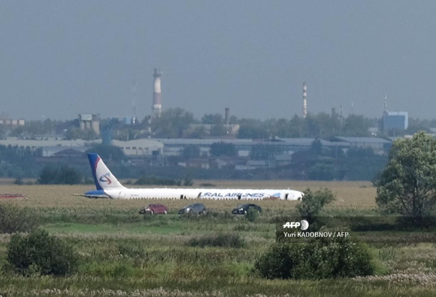 """El aparato """"chocó al despegar contra una bandada de pájaros"""" en el aeropuerto de Jukovki, en los suburbios de Moscú."""
