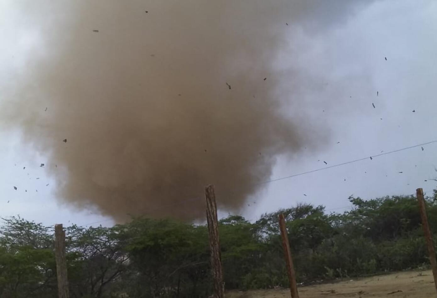 el tornado se llevó todo lo que vio a su paso