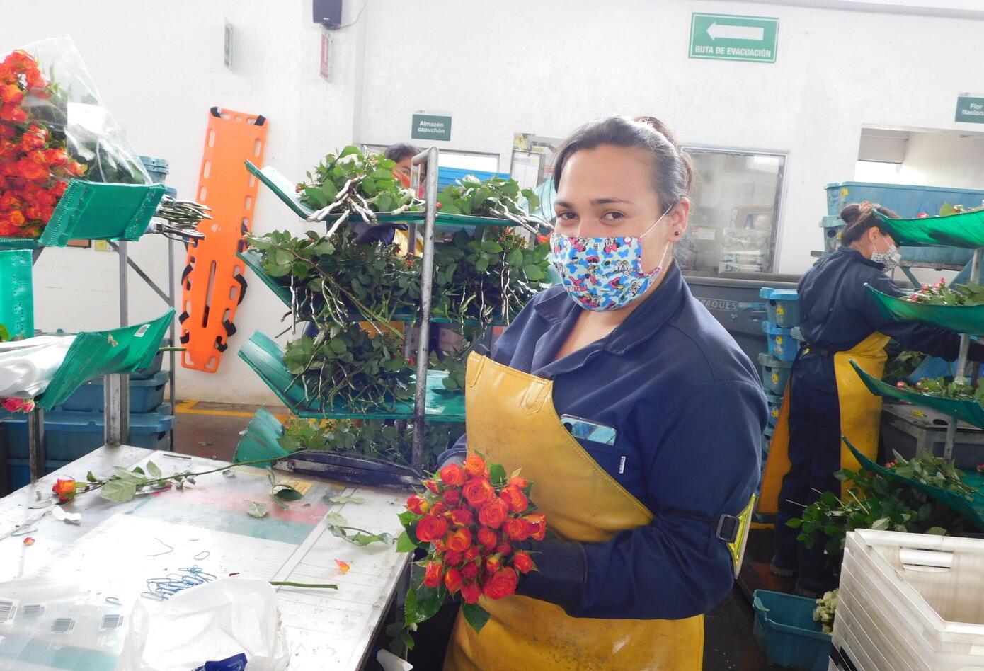 Empresa cultivadora de flores colombiana.