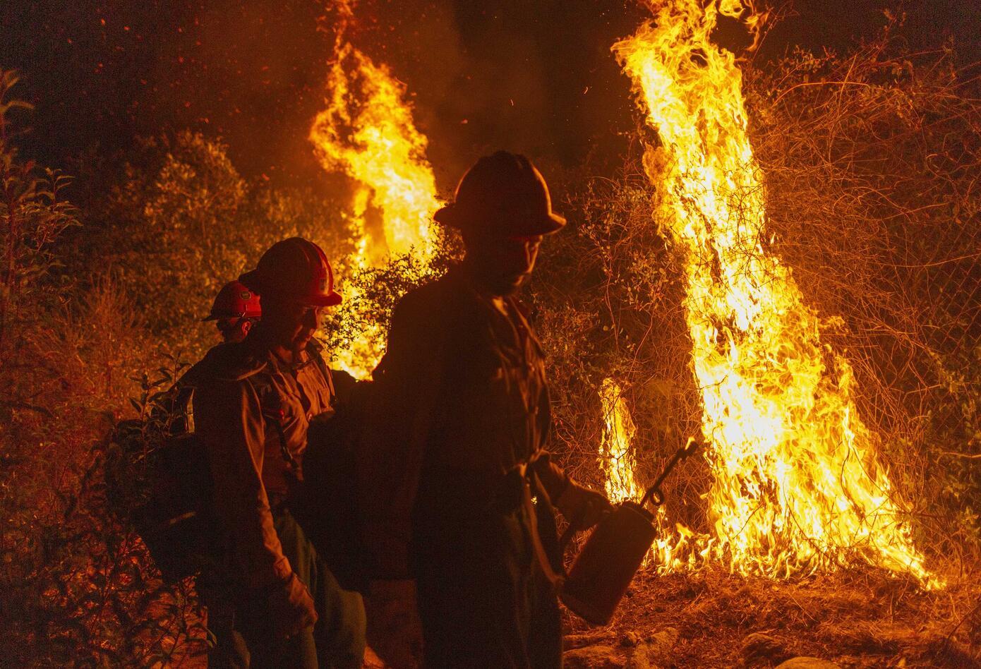 Incendio en humedal más grande del mundo en Brasil.
