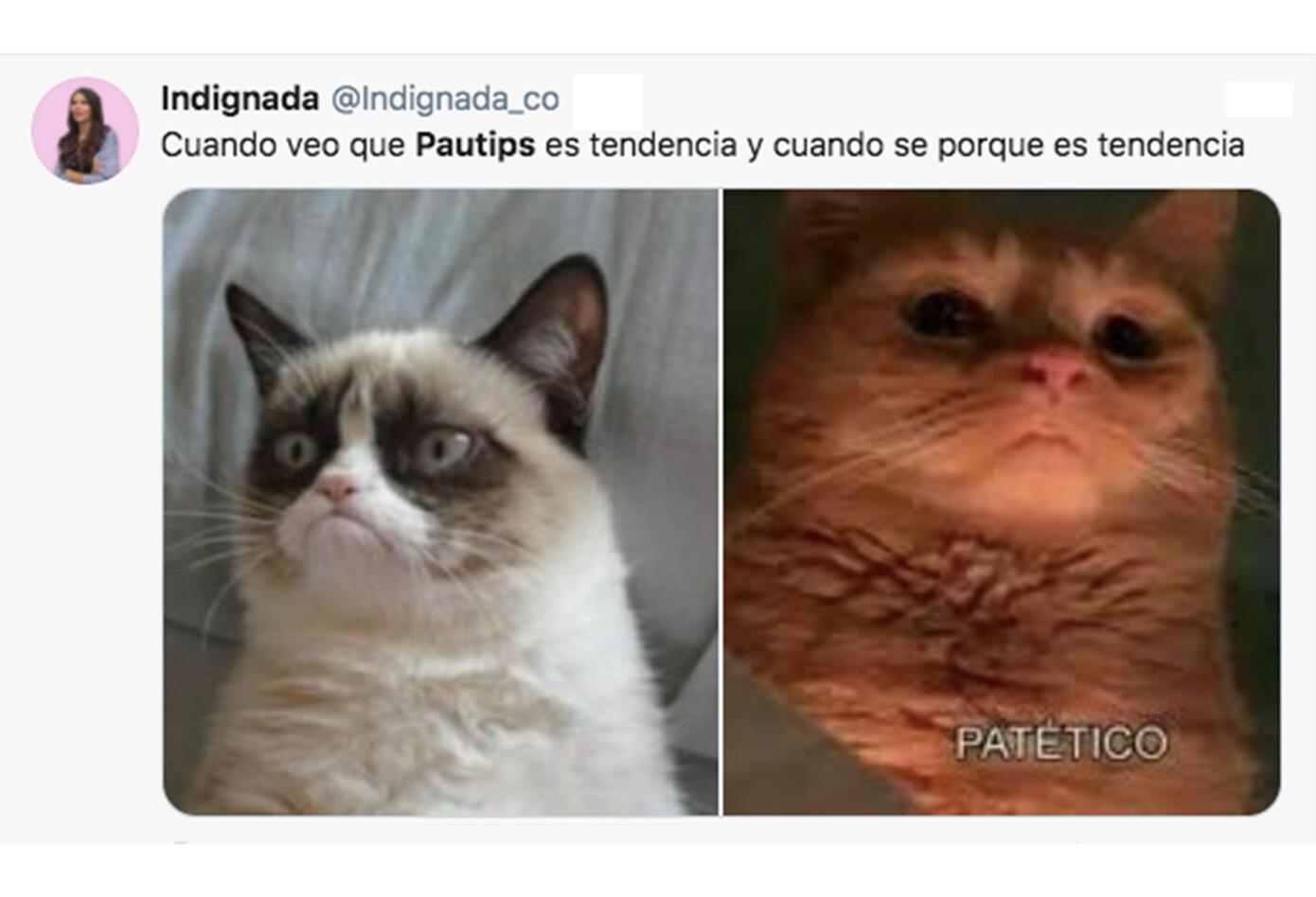 Memes Pautips