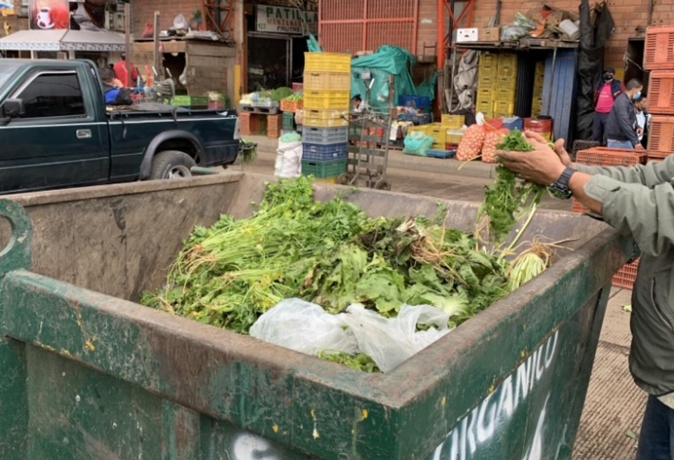 Legumbres en contenedores en buen estado