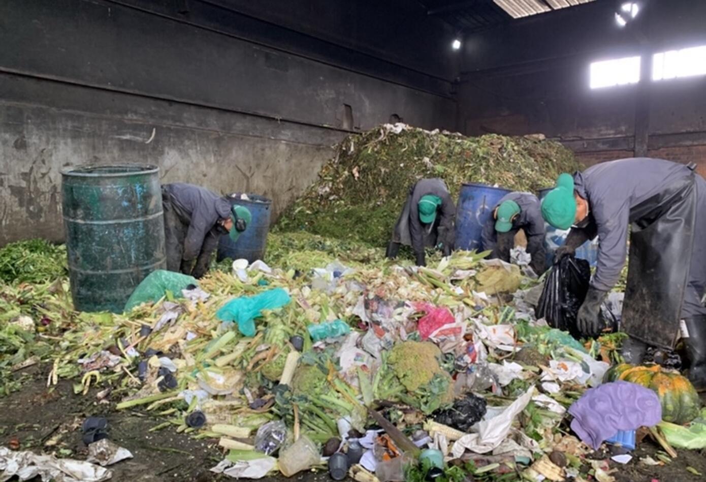Empleados Corabastos separando lo orgánico