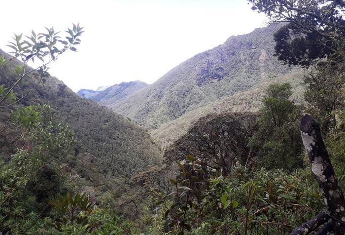 Acceso al Parque Nacional Natural Los Nevados