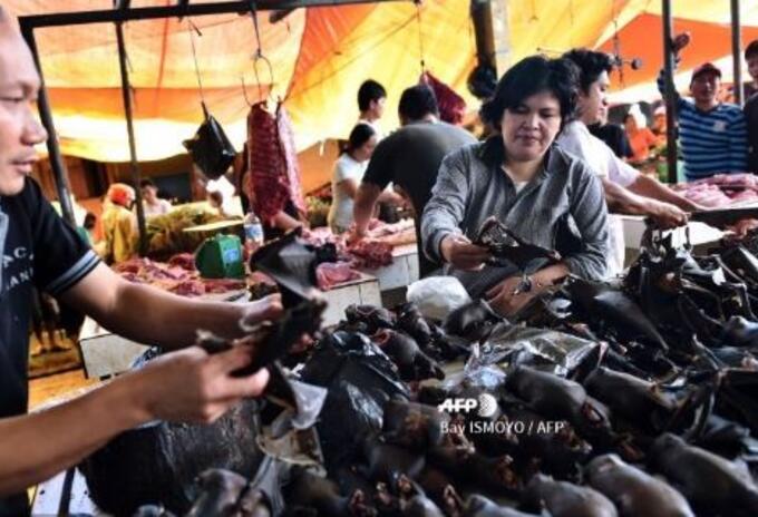 Mercado animal en la Chins