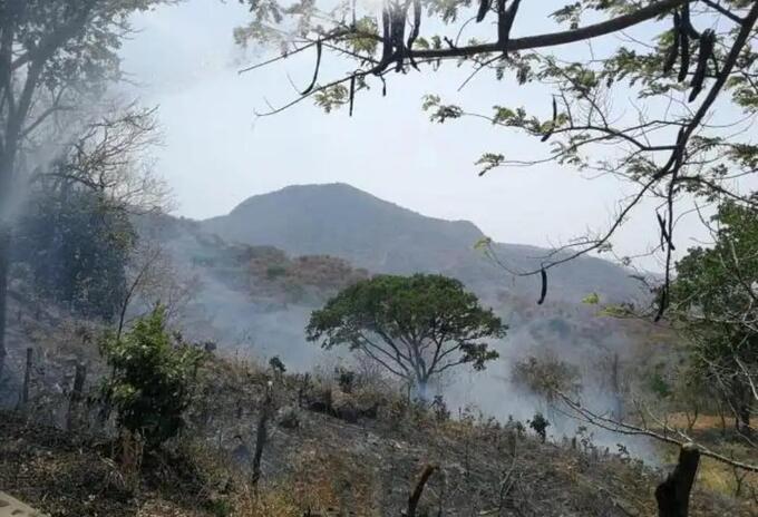 Incendios en zonas montañosas de La Guajira