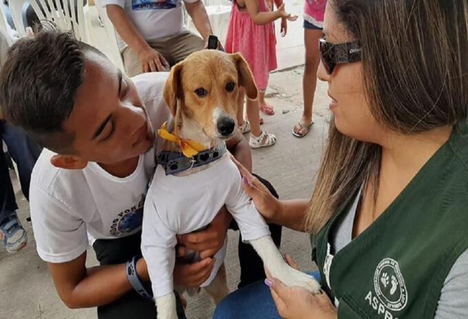 Niño se murió por salvar a su perro de incendio