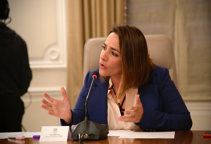 Directora del ICBF
