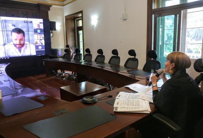 Alicia Arango, Ministra del Interior en sesión virtual con el Congreso