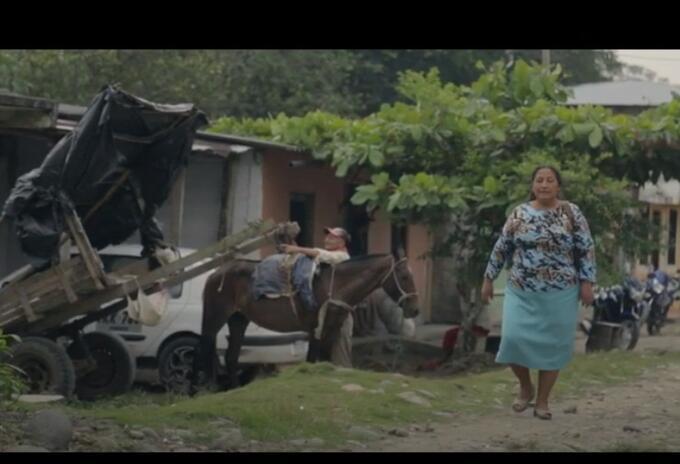 Documental El Tigre no es como lo Pintan