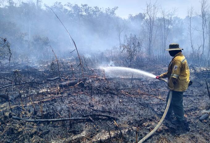 Incendio en Parque Isla de Salamanca, en Magdalena.