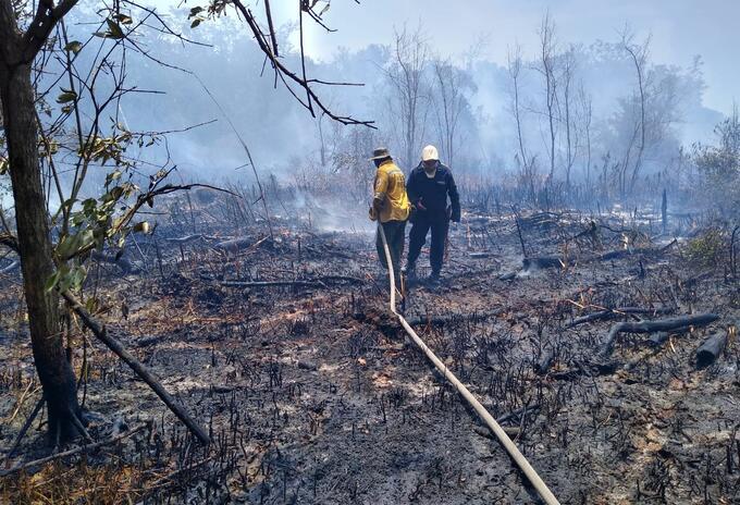 Incendio Parque Isla de Salamanca, Magdalena.