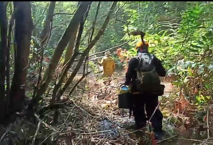 Mantienen operativo de extinción del incendio forestal