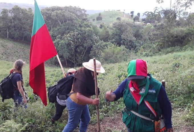CRIC indígenas erradicando