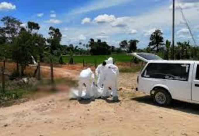 Asesinatos en Tibú